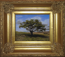 Giclee on Canvas with Frame 2EMP005-G titled 'Big Cork Tree' by John O'Keefe Jr.