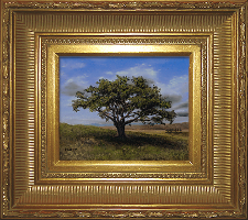 Giclee on Canvas with Frame 2EMP006-G titled 'Big Cork Tree' by John O'Keefe Jr.