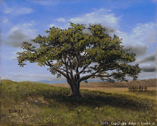 Landscape oil painting entitled 'Big Cork Tree' by John O'Keefe