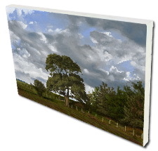 Giclee on Canvas titled 'The Field's Edge' by John O'Keefe Jr.