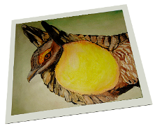 Giclee on Paper titled 'Prairie Chicken' by John O'Keefe Jr.
