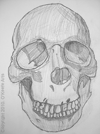 Graphite Drawing by Danielle O'Keefe - Study for Skull and the Hidden Images