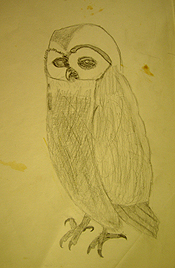 John O'Keefe's early pencil drawing of an owl, created when he was seven years old