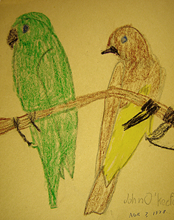 John O'Keefe's early crayon drawing of a parrot and a bird, created when he was seven years old