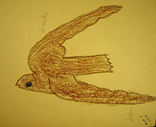 John O'Keefe's early crayon drawing of a barn swallow, created when he was seven years old