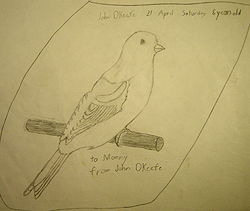 John O'Keefe's early pencil drawing of a Canary signed to his mother, created when he was eight years old