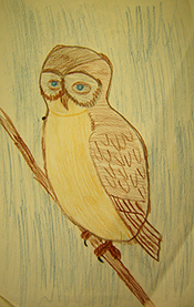 John O'Keefe's early colored pencil drawing of an owl, created when he was seven years old