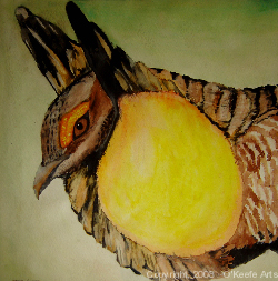 John O'Keefe's watercolor study of a prairie chicken, created when he was sixteen years old