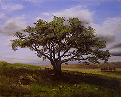 Painting tutorial for 'Big Cork Tree' by John O'Keefe Jr. - Day 2 Hour 12