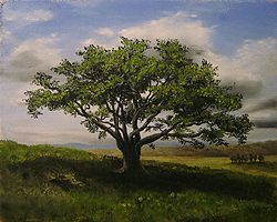 Painting tutorial for 'Big Cork Tree' by John O'Keefe Jr. - Day 3 Hour 13