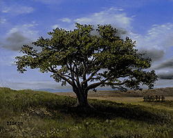 Painting tutorial for 'Big Cork Tree' by John O'Keefe Jr. - Day 4 Hour 15