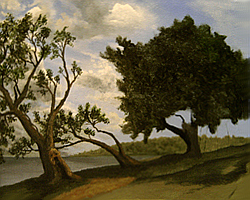 Painting tutorial for 'Old Olive Tree Path' by John O'Keefe Jr. - Day 3