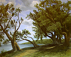 Painting tutorial for 'Old Olive Tree Path' by John O'Keefe Jr. - Day 4